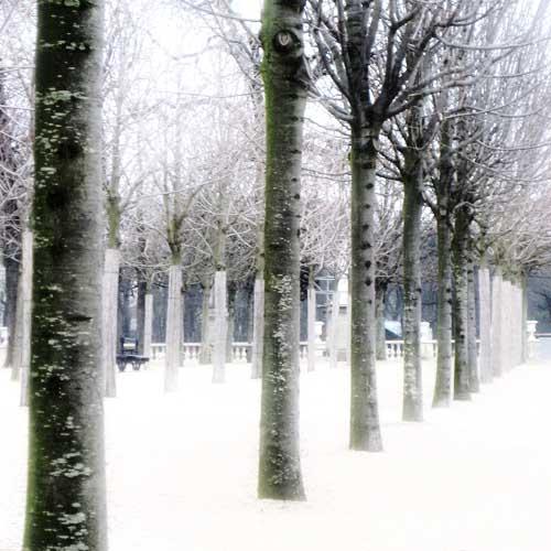 Jardins de Luxembourg 1